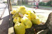 Campagne de nettoyage contre la dengue au MT&RN